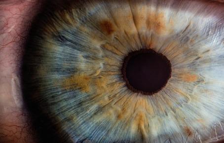 iridologie-naturopathe-rennes35.fr